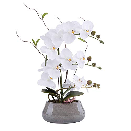 LIVILAN Large Artificial Flower Arrangement Lifelike Silk Orchid Artificial Flower with Decorative Ceramic Grey Vase Vivid Potted Orchid Plant White (Silk Plant Centerpiece)
