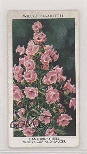 Canterbury Bell Ungraded COMC Good to VG-EX (Trading Card) 1939 Wills Garden Flowers by Richard Sudell - Tobacco [Base] #10