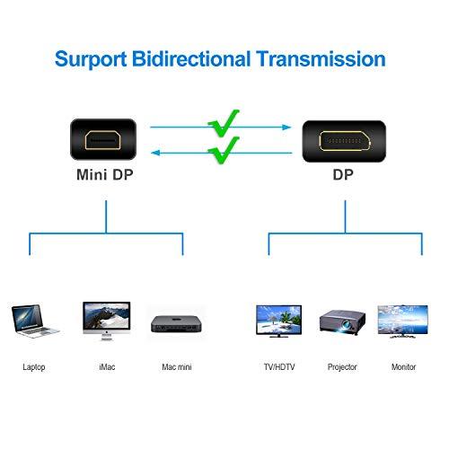 Rankie Mini DisplayPort to DisplayPort Cable, Mini DP to DP, 4K Ready, Gold  Plated, 6 Feet
