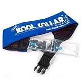 Cooling Dog Collar-M-BLUE