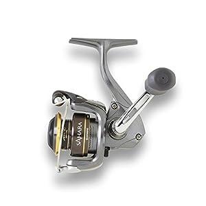 Shimano Reels | Shimano Fishing Reels, Shimano Baitcaster | Academy