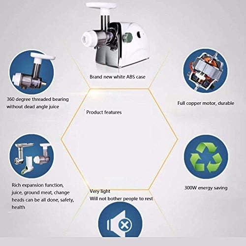 Simple horizontale Auger lente Masticating Juicer lente Juicer Juicer Masticating BPA Extrait sain Nutrition des fruits et légumes hsvbkwm