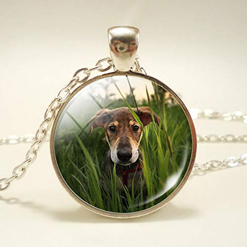 New Dog Pendant Necklace Round Shape Glass Cabochon Dog Pet Jewelry Dog Memorial Gift 2017 New Year Gift for Women