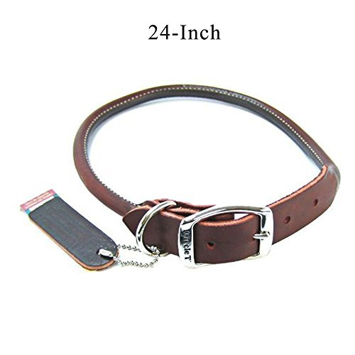Buy rolled leather collar for large dogs