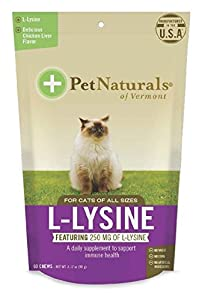 L-Lysine Chews, Immune and Respiratory Support for Cats