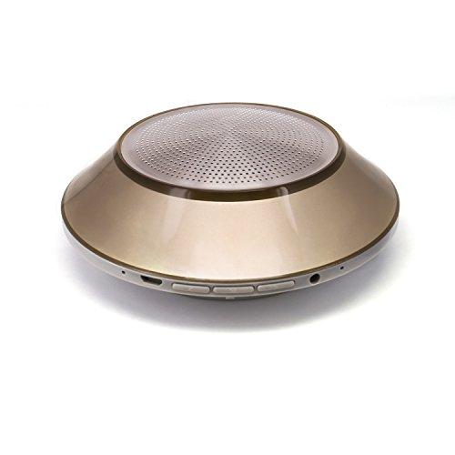 SCS ETC Bluetooth Speaker 360 Sound Gold