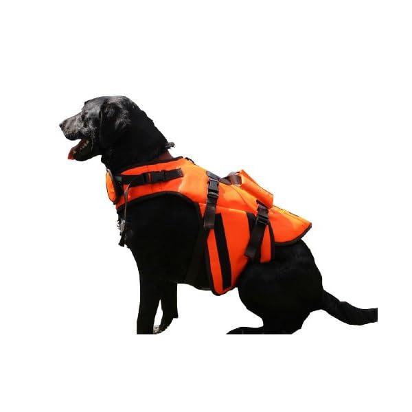 Outback Jack Dog Life Jacket by Hyper Pet, Orange, Large Click on image for further info.