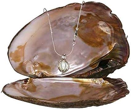 Collar de fantasía con perla auténtica en ostra decorativa, diseño de jaula de corazón