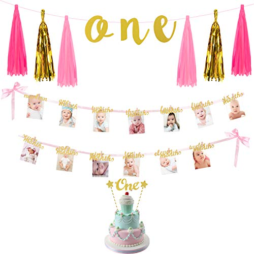 (1st Birthday Party Decorations Kit ONE Tassel Banner 12Months Milestone Photo Banner Cake Topper for Baby Girl Birthday Party)