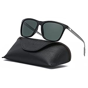 Ray Parker Unisex Polarized Sunglasses Classic Men Retro Sun Glasses RP387 with Black Frame/G15 Lenses