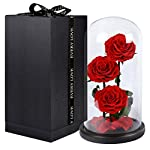 FunPa-3PCS-Rose-Preserved-Flowers-Unwithered-Beauty-and-The-Beast-Red-Eternal-Roses-in-a-Glass-Dome-Valentines-Gift-Decoration