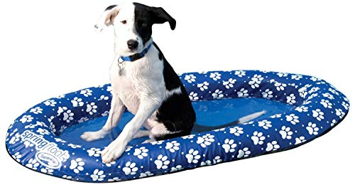 SwimWays Spring Float Paddle Paws Dog Pool Float - Small (0-65 lbs) (Renewed)