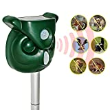 Chansh Solar Powered Ultrasonic Outdoor Animal Repeller + Flashing Strobe - Effectively Scares Away Cats, Dogs, Squirrels, Racoon Groundhog Skunk etc - Motion Activated [2019 Upgraded Version]