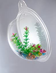 Abyss Pets Wall Mounted Hanging Fish Bowl Aquarium Tank for Gold Fish and Beta Fish, 10\