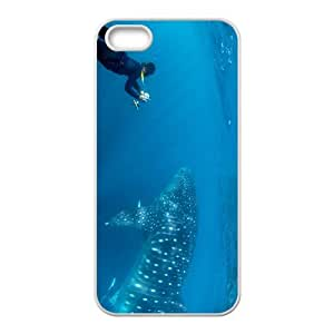 Amazing Rhincodon typus Hight Quality Plastic Case for Iphone 5s