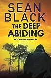 The Deep Abiding: A Crime Thriller (Ryan Lock & Ty Johnson Book 10)