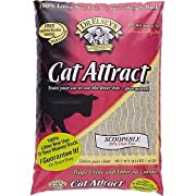 Precious Cat Cat Attract Problem Cat Training Litter 40 pound bag
