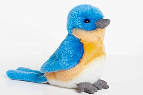 Bluebird 6