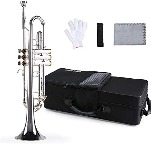 ammoon Trompeta Bb B, Trompeta Profesional, Latón Plateado, con Boquilla 5C, Paño de Limpieza (Color Aleatorio), Guantes, y Estuche de Transporte: Amazon.es: Instrumentos musicales