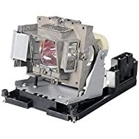CTLAMP Replacement 5811116617-S Projector Bulb with Housing for Vivitek D950HD Projector