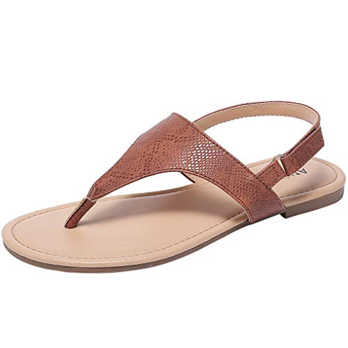 (Ataiwee Women's Casual Wear Flat Sandals with T-Strap Thong Toe Back Strappy.(1903044 Brown 9))