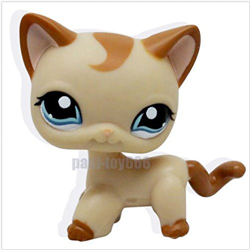 Littlest Pet Shop RARE Brown Short Hair Cat Kitty Blue Eyes LPS Toy (Littlest Pet Shop Brown Cat)
