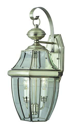 Aluminum Lantern Brushed Outdoor - Trans Globe Lighting 4320 BN Outdoor Courtyard 20.5