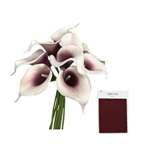 Angel Isabella, LLC 20pc Set of Keepsake Artificial Real Touch Calla Lily with Small Bloom Perfect for Making Bouquet, Boutonniere,Corsage (Picasso Wine(Burgundy)) 2