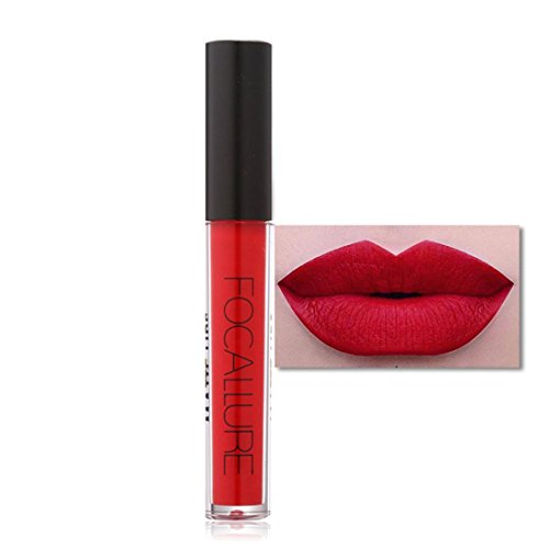 Binmer(TM) FOCALLURE New Fashion Lipstick Cosmetics Women Sexy Lips Matte Lip Gloss Party (A)