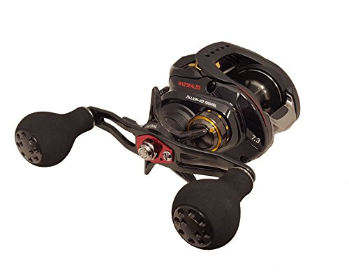 Daiwa ZLNHD100HSL Test High Speed Baitcasting Fishing Reel, 14-16 lb, Black Review