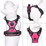 PHOEPET No Pull Dog Harnesses for Small Puppies