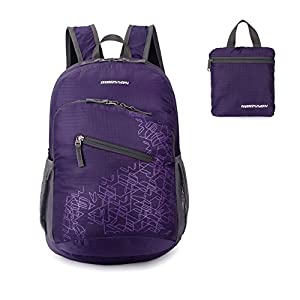 ORICSSON 20L Water Resistant Handy Packable Lightweight Backpack Foldable Rucksack School Daypack(Purple)