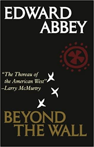 Image result for beyond the wall abbey amazon
