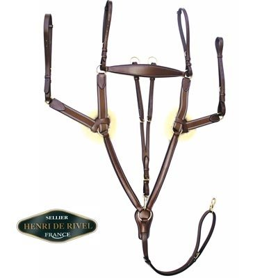HDR Pro 5 Point Elastic Breastplate Horse (English Martingale)