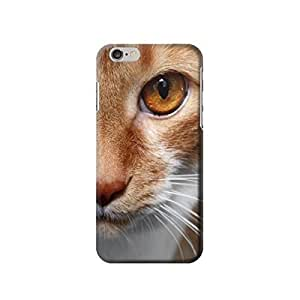 """Cat Face inches iphone 5C Case,fashion design image custom iphone 5C inches case,durable iphone 5C hard 3D case cover for iphone 5C """", iphone 5C Full Wrap Case"""