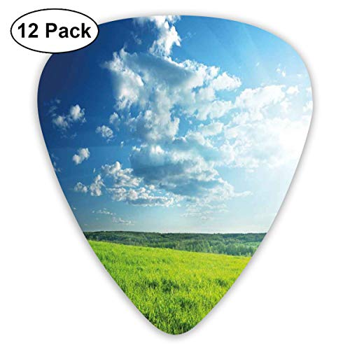 Guitar Picks 12-Pack,Refreshing Meadow Valley Under Cloud Sun Sky Spring Grass Country Image
