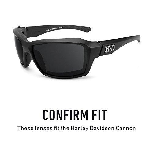Verres de rechange pour Harley Davidson Cannon — Plusieurs options Titanium MirrorShield® - Polarisés