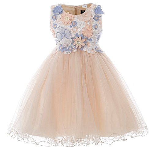CIELARKO Girls Dress Kids Flower Lace Party Wedding Dresses (2-3 Years, Champagne)