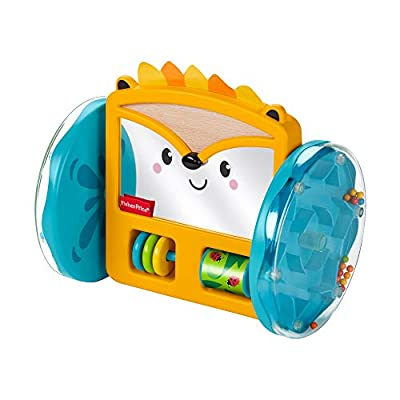 Fisher-Price Play & Crawl Hedgehog Mirror: Toys & Games