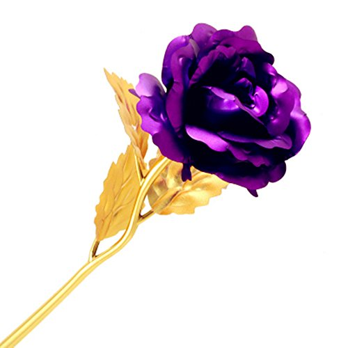 HD MASTER 24K Gold Plated Foil Rose Flower With Gift Box For Girlfriend Lover Mother Valentine's Day Birthday Anniversary (Purple)