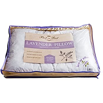Amazon Com Best In Rest Lavender Pillow Queen Size