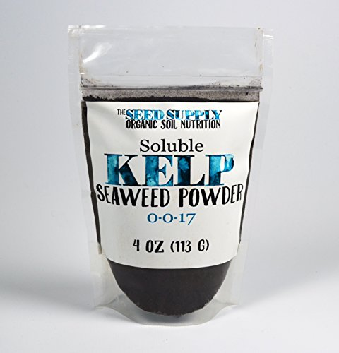Soluble Kelp Seaweed Powder - 4 Ounces for Plant Root Development and Growth Stimulant 0-0-17 Organic - Soluble Seaweed Powder