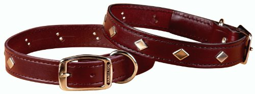 Hamilton 1/2″ x 16″ Diamond Pattern Studded Burgundy Leather Dog Collar, My Pet Supplies