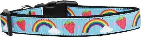 Mirage Pet Products Rainbows & Berries Nylon Dog Collar, Medium (Collar Dog Berry)