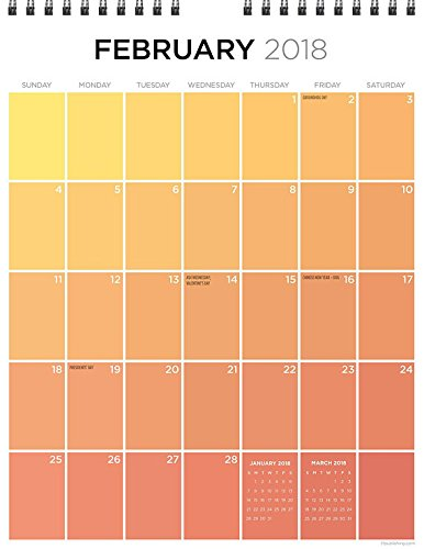 Opmnla 2018 For the Love of Color Monthly Grid Hanging Wall Calendar