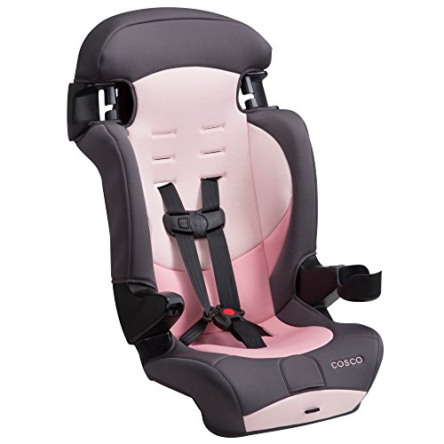 41iVSH1ShYL - Cosco Finale DX 2-in-1 Booster Car Seat, Sweet Berry