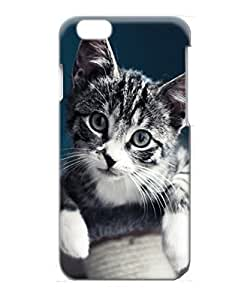 VUTTOO Iphone 6 Case, Cute Gray Kitten Portrait Snap-on Hard Case for Apple iPhone 6 4.7 Inch