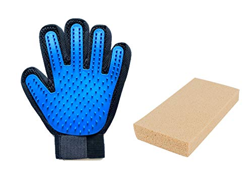 RiverOaks Pet Grooming Glove and Pet Hair Sponge (2- Item Bundle)