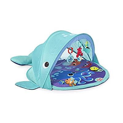 Explore & Go Whale Gym