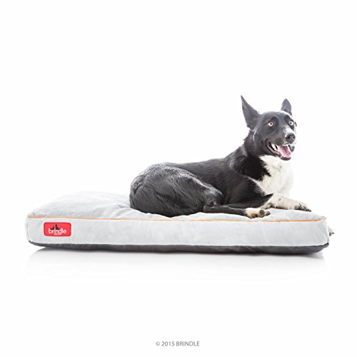 Brindle Soft Shredded Memory Foam Dog Bed with Removable Washable Cover - 34in x 22in - Stone